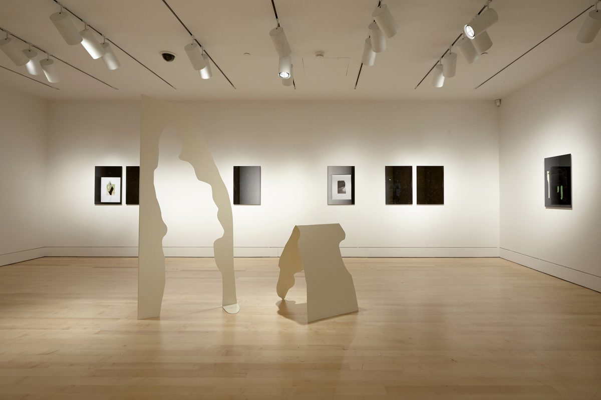 Installation view of Nadia Belerique at The Art Gallery of Hamilton, 2015