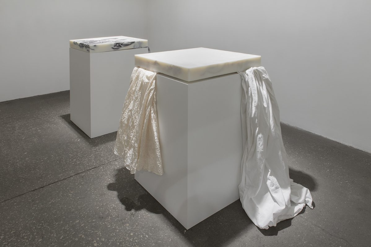 Installation view of Iris Häussler at Daniel Faria Gallery.
