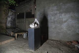 Installation view of Derek Liddington at 8-11, Toronto, 2015