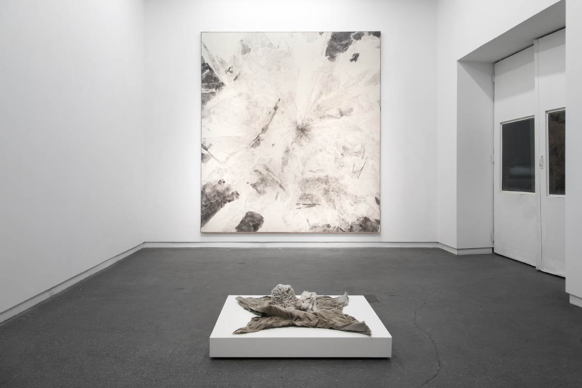 Installation view of Derek Liddington at Daniel Faria Gallery, 2015