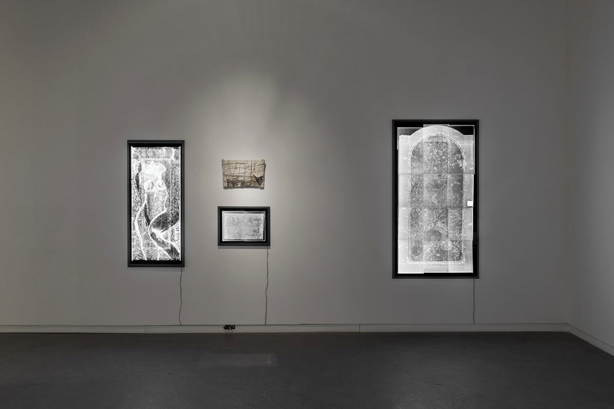 Installation view of Iris Häussler The Sophie La Rosière Project at Daniel Faria Gallery, 2016