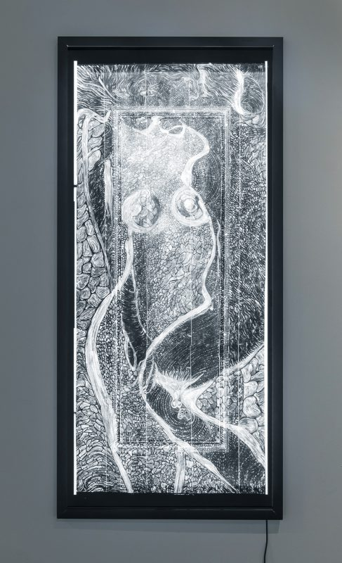 The Sophie La Rosière Project (SLR-260, unknown year) X-ray, 2016