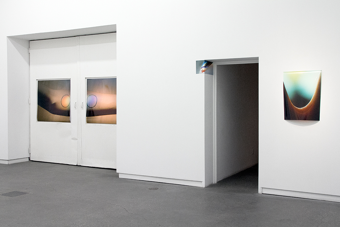 Installation view of Steven Beckly at Daniel Faria Gallery, 2017