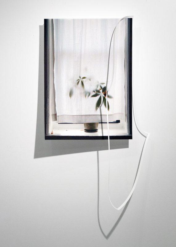Steven Beckly, Crop Window, 2017