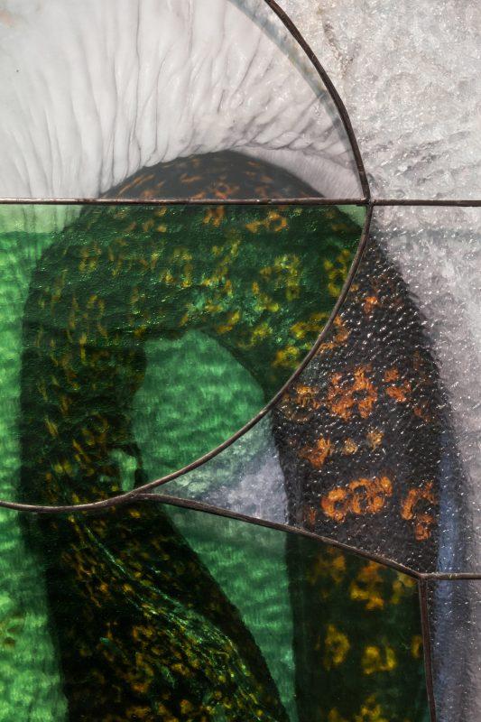 Eels (detail), 2019